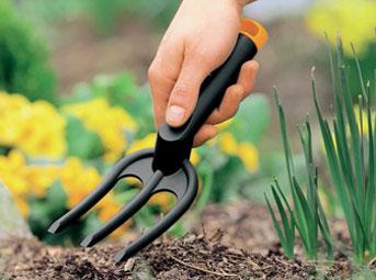 Агрокиллер, Лонтрел, Прополол:: убить сорняки и деревья, которые завезли вместе с землей на участок