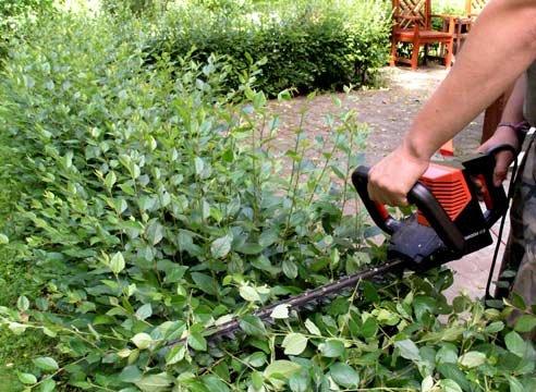 Необходимость садовой техники